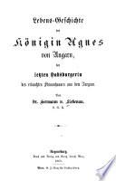 Lebens Geschichte der K  nigin Agnes von Ungarn  der letzten Habsburgerin des erlauchten Stammhauses aus dem Aargaue