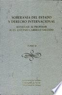Soberanía del estado y derecho internacional