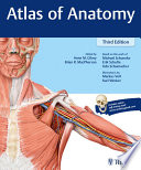 Atlas of Anatomy Anatomy Is Now Fully Revised And Updated Atlas