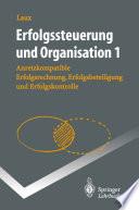 Erfolgssteuerung und Organisation