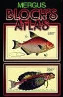 Bloch's atlas