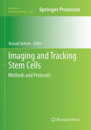 Imaging and Tracking Stem Cells