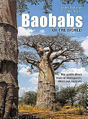 Baobabs of the World Tribute To The Baobab An Extraordinary