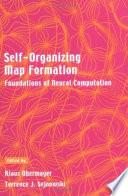 Self-organizing Map Formation