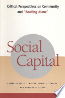 Ebook Social Capital Epub Scott L. McLean,David A. Schultz,Manfred B. Steger Apps Read Mobile