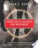 Horse Gaits  Balance  and Movement