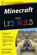 illustration Minecraft Pour les Nuls