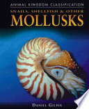 Snails  Shellfish  and Other Mollusks