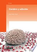 Cerebro y adicci  n