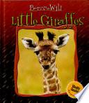 Little Giraffes