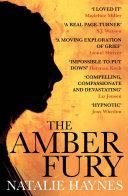 Amber Fury Book PDF