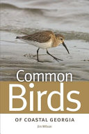 Common Birds of Coastal Georgia