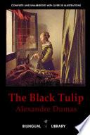 The Black Tulip - a Tulipe Noire