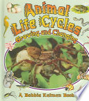 Animal Life Cycles Whales Birds Snakes Fish And Spiders