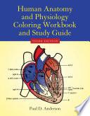 Human Anatomy   Physiology Coloring Workbook