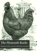 The Plymouth Rocks