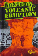 Anatomy of a Volcanic Eruption