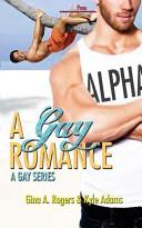 A Gay Romance book