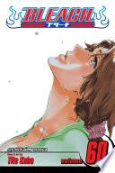 Bleach  Vol  60