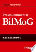 Praxiskommentar BilMoG