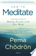 . How to Meditate .