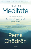 How To Meditate : inner longing for authenticity, connection, compassion,...