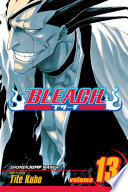 Bleach  Vol  13