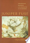 Juniper Fuse
