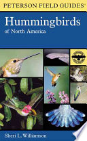 A Field Guide to Hummingbirds of North America Hummingbirds Explains How To Identify The Various Species