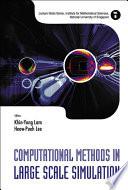 Computational Methods in Large Scale Simulation