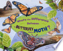 What's the Difference Between a Butterfly and a Moth? And Their Physical Characteristics Diet Behavior And Habitat