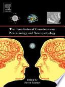 The Boundaries of Consciousness