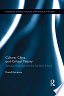 Culture  Class  and Critical Theory