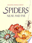 Spiders Near and Far Rare Spiders From Near And Far
