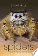 Spiders The Opening Sentence In This Book The Author