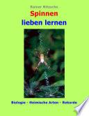 Spinnen lieben lernen