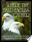 Where the Bald Eagles Gather