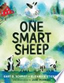 One Smart Sheep