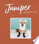 Juniper  The Happiest Fox