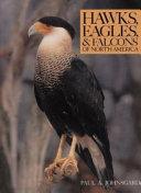 Hawks  Eagles   Falcons of North America