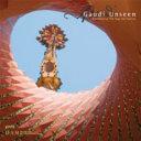 Gaudi Unseen