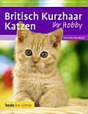 Britisch-Kurzhaar-Katzen