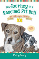 The Journey of a Rescued Pit Bull