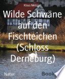 Wilde Schwäne auf den Fischteichen (Schloss Derneburg)