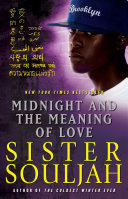 Midnight and the Meaning of Love The Coldest Winter Ever And Midnight Delivers Her