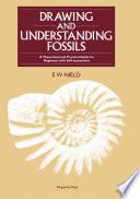 Drawing Understanding Fossils