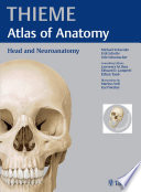 Head and Neuroanatomy (THIEME Atlas of Anatomy) Neuroanatomy Comprehensive Coverage Of Neuroanatomy Describes Isolated Structures And