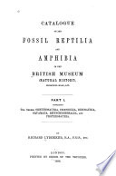 Catalogue Of The Fossil Reptilia And Amphibia In The British Museum Natural History The Orders Ornithosauria Crocodilia Dinosauria Squamata Rhynochocephalia And Proterosauria