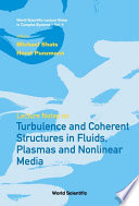 Lecture Notes on Turbulence and Coherent Structures in Fluids  Plasmas and Nonlinear Media