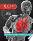 Breathtaking Respiratory System